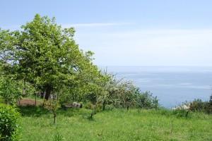 Vista mare da Crevari, Genova Voltri